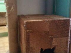 Домик для кошки. Кошачий домик
