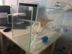 Аквариум 40л для черепах